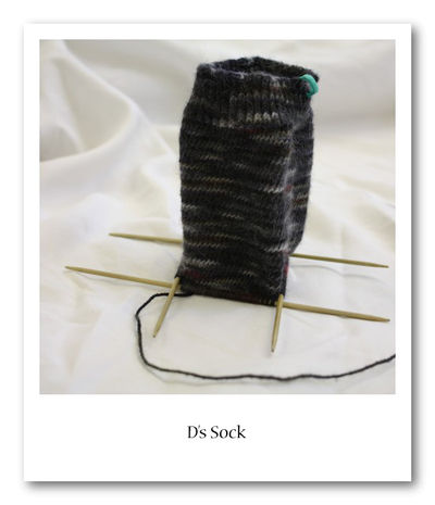 D's Sock In Progress 1