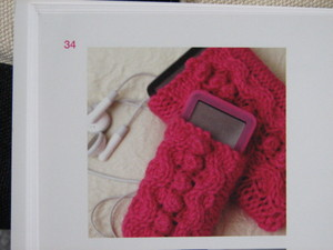 Ipod_holder_from_dbs_pure_cashmere_patte